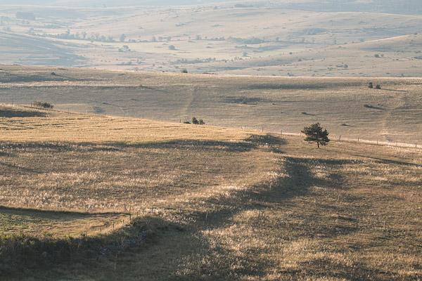 Het landschap op de causse Mejean