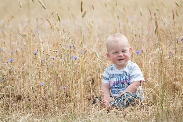 Daniel in een graanveld met wilde bloemen
