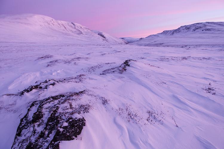Zonsopkomst in een besneeuwd Dovrefjell