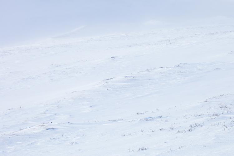Sneeuw patroon in winters Dovrefjell