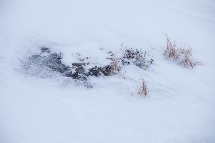 Sneeuw en abstract patroon