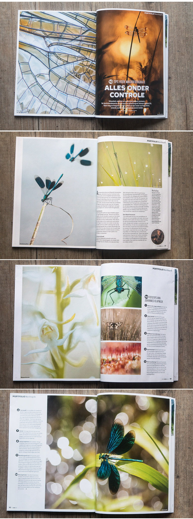 Portfolio publicatie in Roots magazine