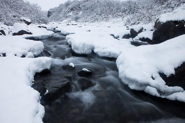 Besneeuwd stroompje in het Skaftafell nationaal park