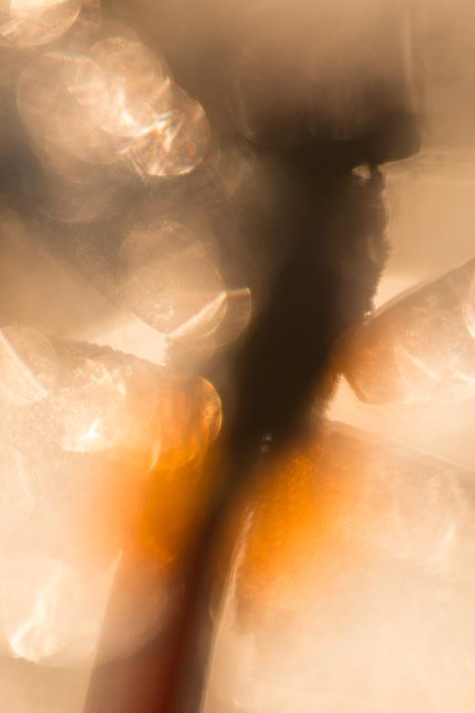 Impressionistische benadering van een mannetje vuurlibel (Crocothemis erythraea)