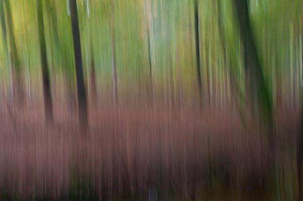 Abstract herfstlandschap van de hand van Mart Bevelander