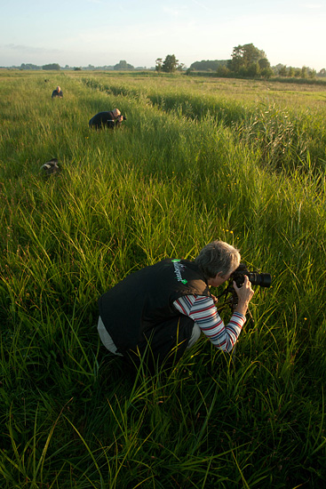 Workshop macro fotografie in de Wieden.